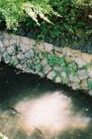 20061104_kois