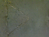 20080709_20080119455s