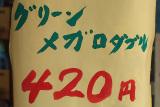 20080916_dscf1917_1ts