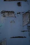 20111107_dscf5768_1s