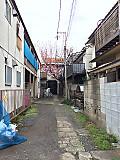20150420_iimg_0184s